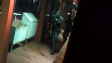 SWAT Pack